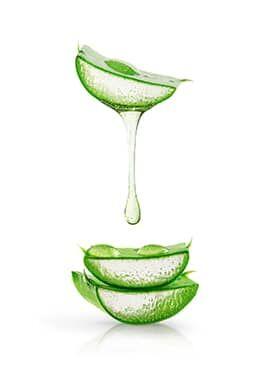 Aloe Vera gél organikus termesztésből sok jó tulajdonsággal